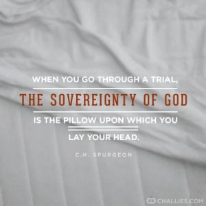sovereignty-pillow