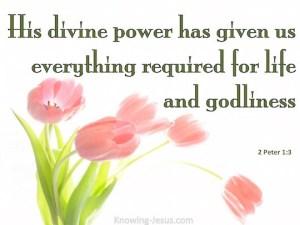 divine-godliness