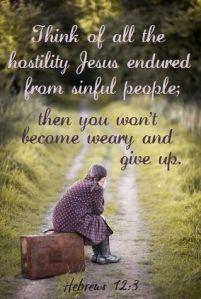 Hebrews 12 3