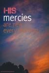 mercy new
