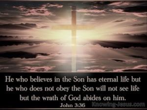 John-3-36-He-Who-Believes-Has-Eternal-Life-black-copy