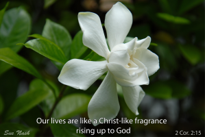 sweet-fragrance-of-christ