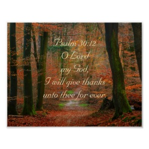 psalm_30_12_give_thanks_to_the_lord_poster-r8a98f6bf24fb4d81823e5aea298af020_wvx_8byvr_540