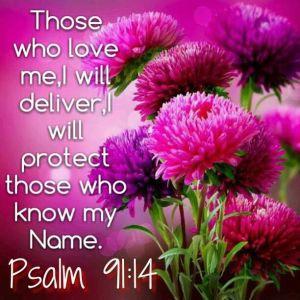 psalm 91 14-15