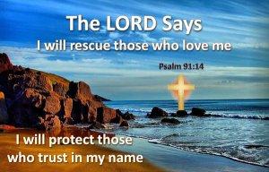 psalm 91 14