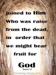 Romans 7-4
