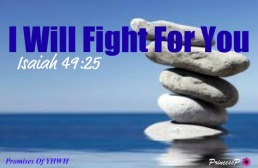 i-will-fight-for-you