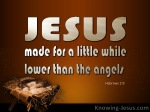 Hebrews 2-9 Jesus Made A Little Lower Than Angels brown