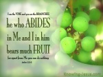 John 15-5 He Who Abide In Me Bears Much Fruit green