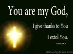 Psalm 118 28