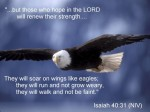 isaiah-40-31 (1)