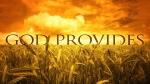 The-Provider