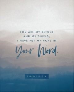 psalm 119 114